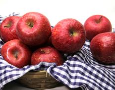 青森県産 家庭用サンふじりんごの画像