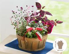 敬老の日にお花のギフトを!秋まで楽しむ寄せカゴの画像