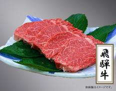 飛騨牛ヒレステーキ 5枚(600g) (岐阜県産)   JAひだ特産加工センター 冷凍の画像