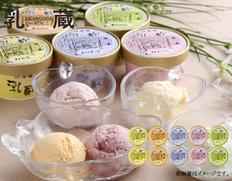 「乳蔵」北海道アイスクリーム(バニラ、赤肉メロン、青肉メロン、ハスカップ、ストロベリー各90ml×2)の画像