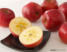 11月 岩手県産りんご「江刺のサンフジ」【11月中にお届け】の画像