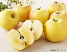12月 青森県産黄色いりんご「こうこう」【12月中にお届け】の画像
